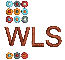WLS Workplace learning solutions